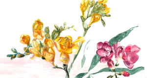 Watercolor freesia by Eien-no-hime