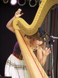 Joanna Newsom, Bonnaroo, 2005 by johannk