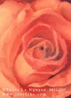 Rose n Oil by merit