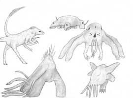 The Alien sophonts #1 by Martiitram