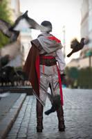 Birds - Assassins Creed 2 by Jiosan
