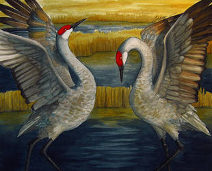 Sandhill Cranes by Tales-of-Torment
