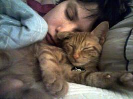 Kitty Snuggles by JennStarr