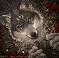 The Druid - Werewolf Calendar 2016 Promo by BadInspiration