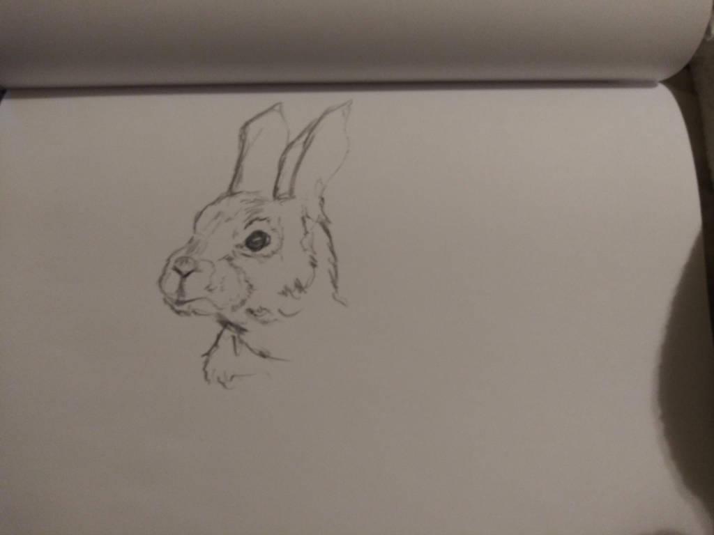 Rabbit by starduskmoon