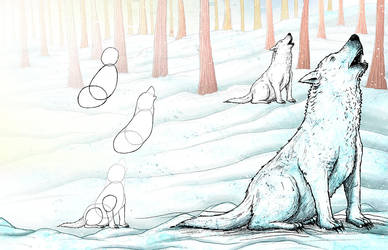 Learning to draw animals - Arctic Wolf by Si2