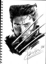 Wolverine by kevinck87