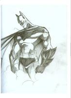 BATMAN by naughtybyn8ur
