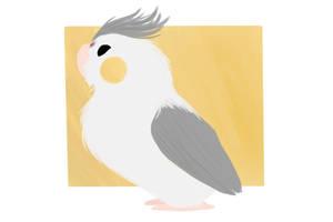 I heard some corny birds who tried to sing by salaxia