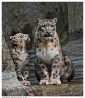 Mama und ich by Reto
