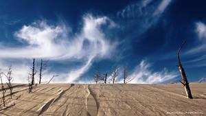 Dunes by KonradJanicki