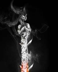 Smoking Kills by mrchrisby