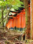 Fushimi-Inari 21 by Hikaru979