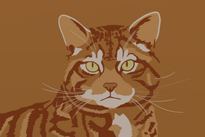 Scottish Wildcat Wallpaper by GDTrekkie