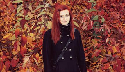 Follow autumn 5 by freezinka