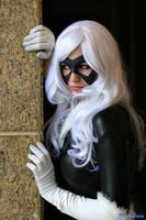 Black Cat - Lurking by superiorshoe