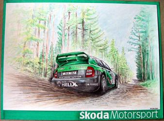 Skoda Fabia WRC 2004 by machoart