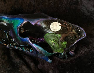 Midnight Moon Coyote Skull by TheSilverCaribou