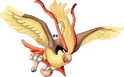 Pidgeot by RapidashKing