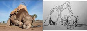 Camel Taxi by deviantbluebug