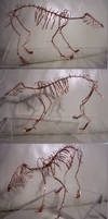 Gray Wolf Skeleton by JPCopper