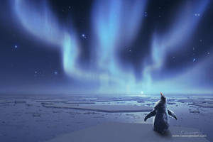 Penguin Dreams by CassiopeiaArt