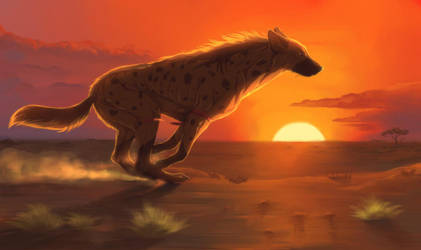 African sun by Wavyrr
