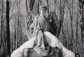 Angel by hellnicki