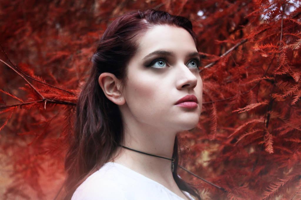 Autumn inspiration by MajaKolarski