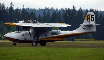 Consolidated PBY Taxi by shelbs2