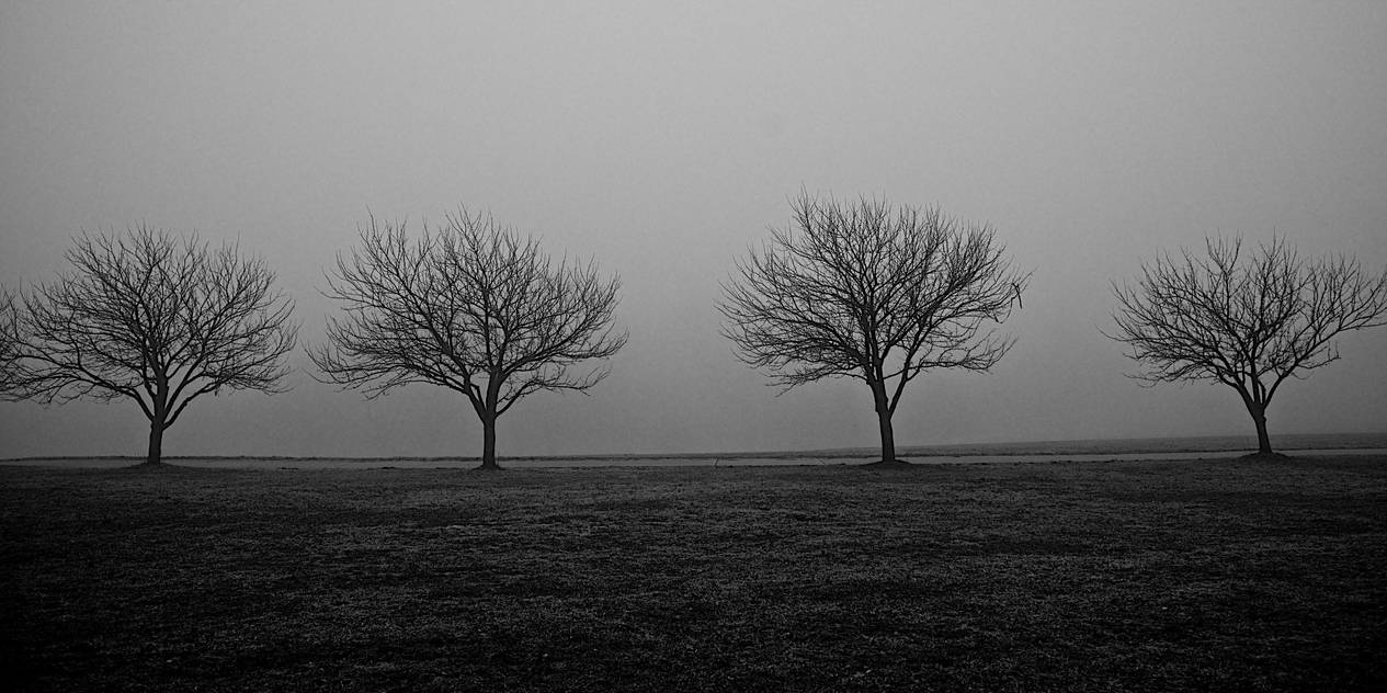 The Four Horsemen by AquarianPhotography