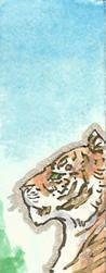 Solemn Tiger by Goshawk