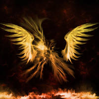 wings? by guandragon