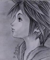 Sora -Kingdom Hearts by barbypornea