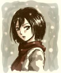 Mikasa by barbypornea