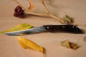 Palm knife by KajiyaEol