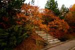 Autumn by KajiyaEol