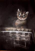 bury kotek na czarnym tle by Tkaczka