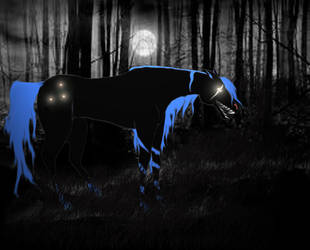 Darkest Hour by wild4horses