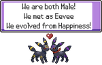Umbreon's Message by EmilLowell