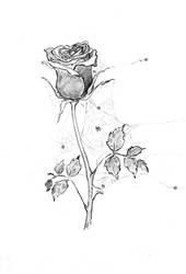 Cobweb Rose (Dinkus for Resonance) by tinycoward