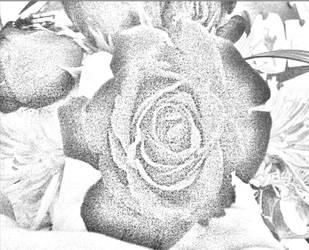 Flower Photo #3 by BookNerd04