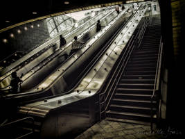 Hudson Yards Subway Escalators by steeber