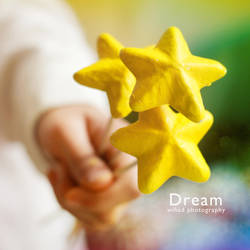 like a Dream by wihad