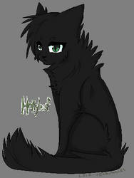 Hollyleaf by teabubbles