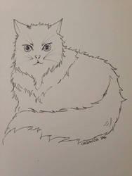Inktober #2 : Fav Animal - Cats by ChizuMichi