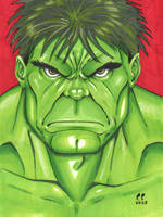 the Incredible Hulk _ Copic by daikkenaurora