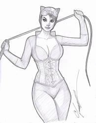 Catwoman Sketch by daikkenaurora