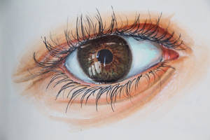 Realistic Eye by Paint-stainedhands