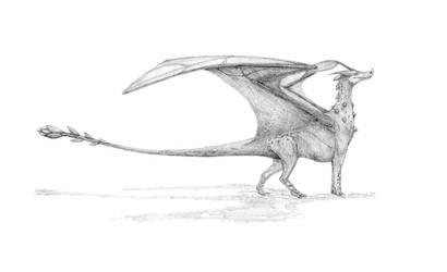 Dragon natura/Nature dragon by javifel